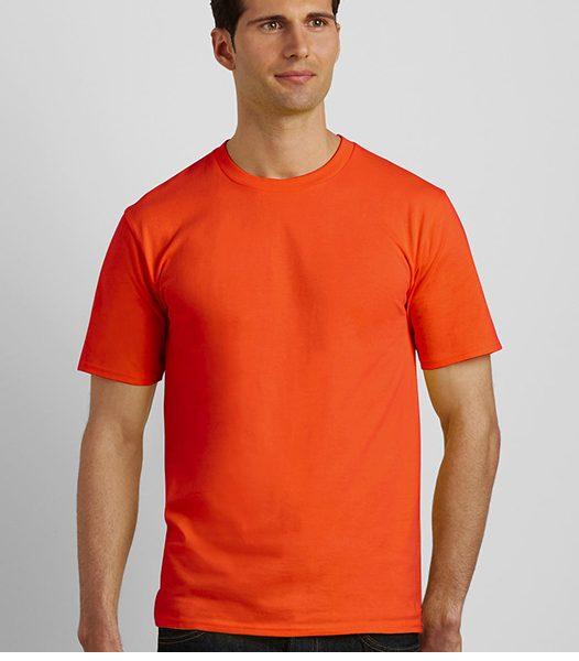 105_09_camiseta-premium-185-gr